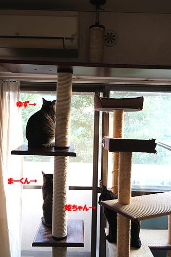 28-11-1-aのコピー.jpg