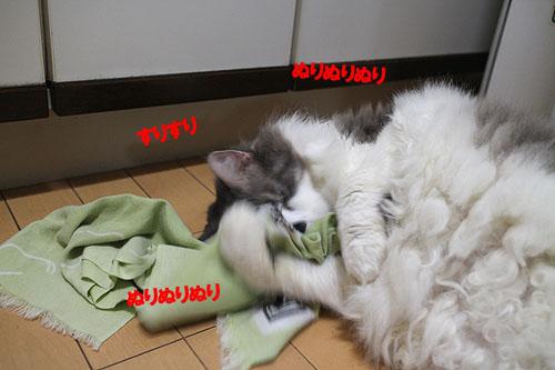 28-11-22-gのコピー.jpg