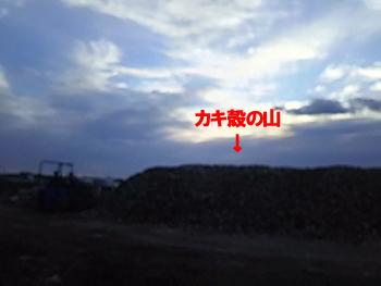 29-1-8-cのコピー.jpg