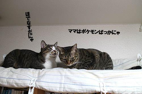 29-2-14-jのコピー.jpg