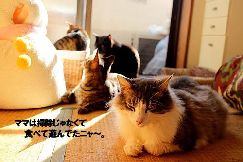 29-3-29-jのコピー.jpg