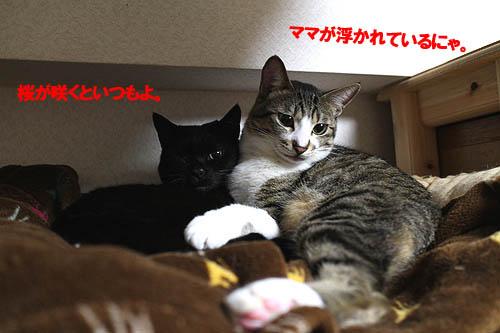 29-3-30-hのコピー.jpg