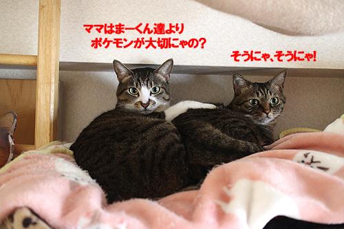 29-4-20-aのコピー.jpg