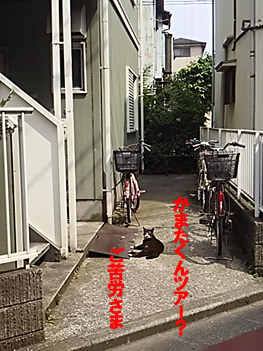 29-4-24-のコピー.jpg