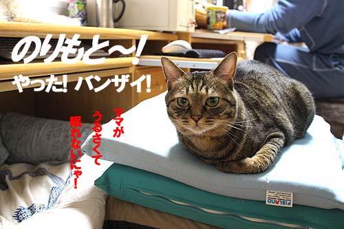 29-6-9-aのコピーのコピー.jpg