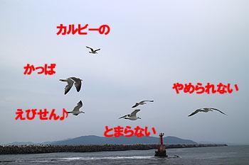 29-7-18-iのコピー.jpg
