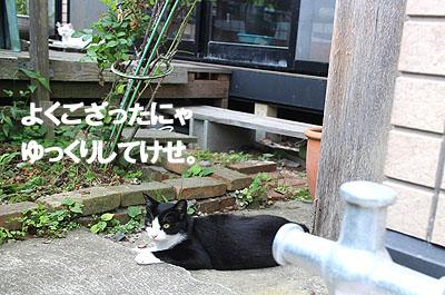 29-7-19-jのコピー.jpg