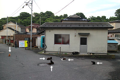 29-7-26-cのコピー.jpg