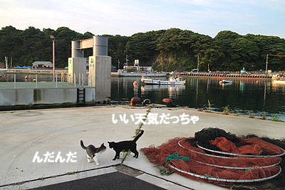 29-7-26-gのコピー.jpg