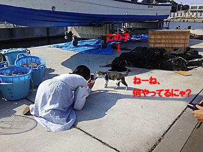 29-7-27-hのコピー.jpg