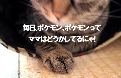 29-8-16-fのコピー.jpg