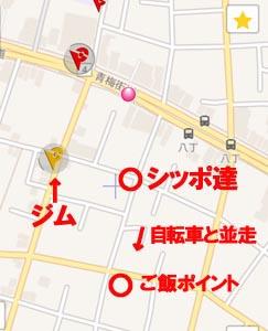 29-9-5-dのコピーのコピー.jpg