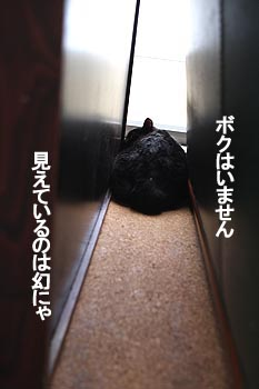 27-6-1-eのコピー.jpg