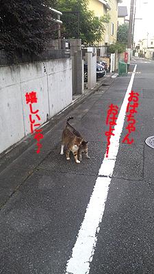 27-7-27-aのコピー.jpg