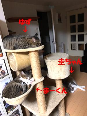 30-11-13-aのコピー.jpg