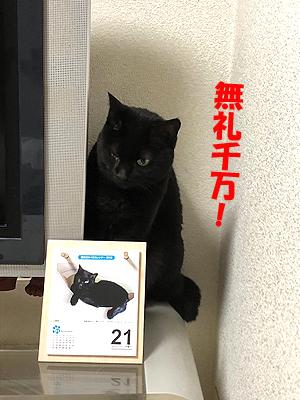 30-11-22-aのコピー.jpg