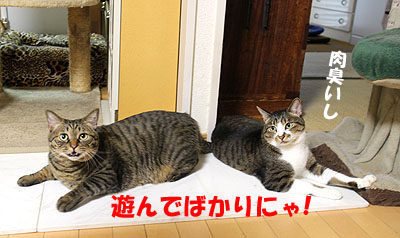 30-7-15-hのコピーのコピー.jpg