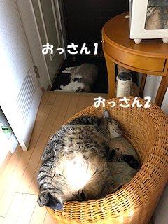 30-8-7-bのコピー.jpg