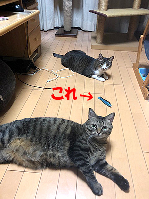 30-9-15-aのコピー.jpg